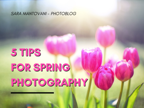 Spring Photography: 5 tips to capture it wonderfully